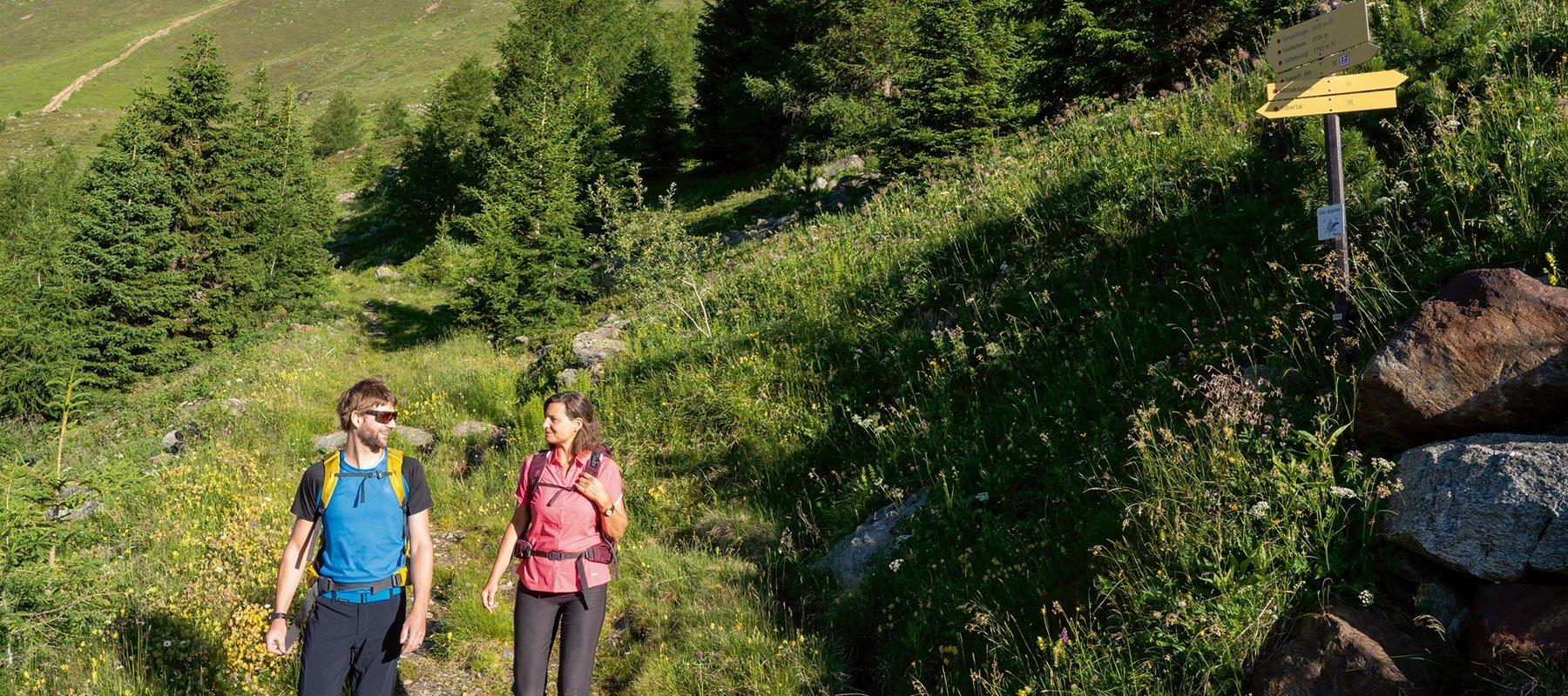 Wandern in Zwieselstein